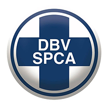 NSPCA-Image UPDATE Dog beaten to death UPDATE Dog beaten to death NSPCA Image