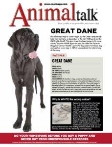 AT FB - Great Dane Breed profile: Great Dane Breed profile: Great Dane AT FB Great Dane 2