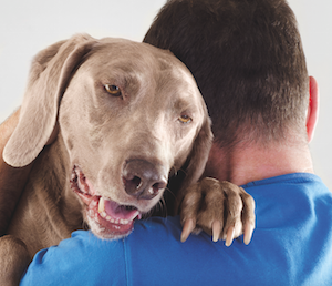 We make a lasting impression on dogs who care about us.