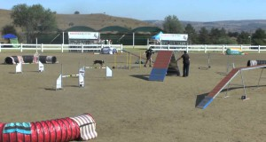 Tracey Lander and Sassy, 2nd Place, SA Champs Round 1