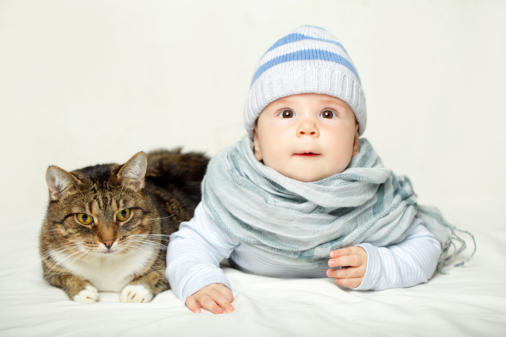 Cats and children can share a relationship that is mutually beneficial Cats and kids - Part 1 Cats and kids - Part 1 shutterstock 152743886