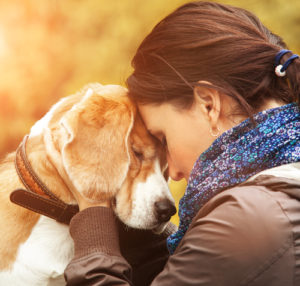 If you have another dog in the home, he may be affected by the loss of his canine companion Dealing with the death of your dog Dealing with the death of your dog shutterstock 292731344