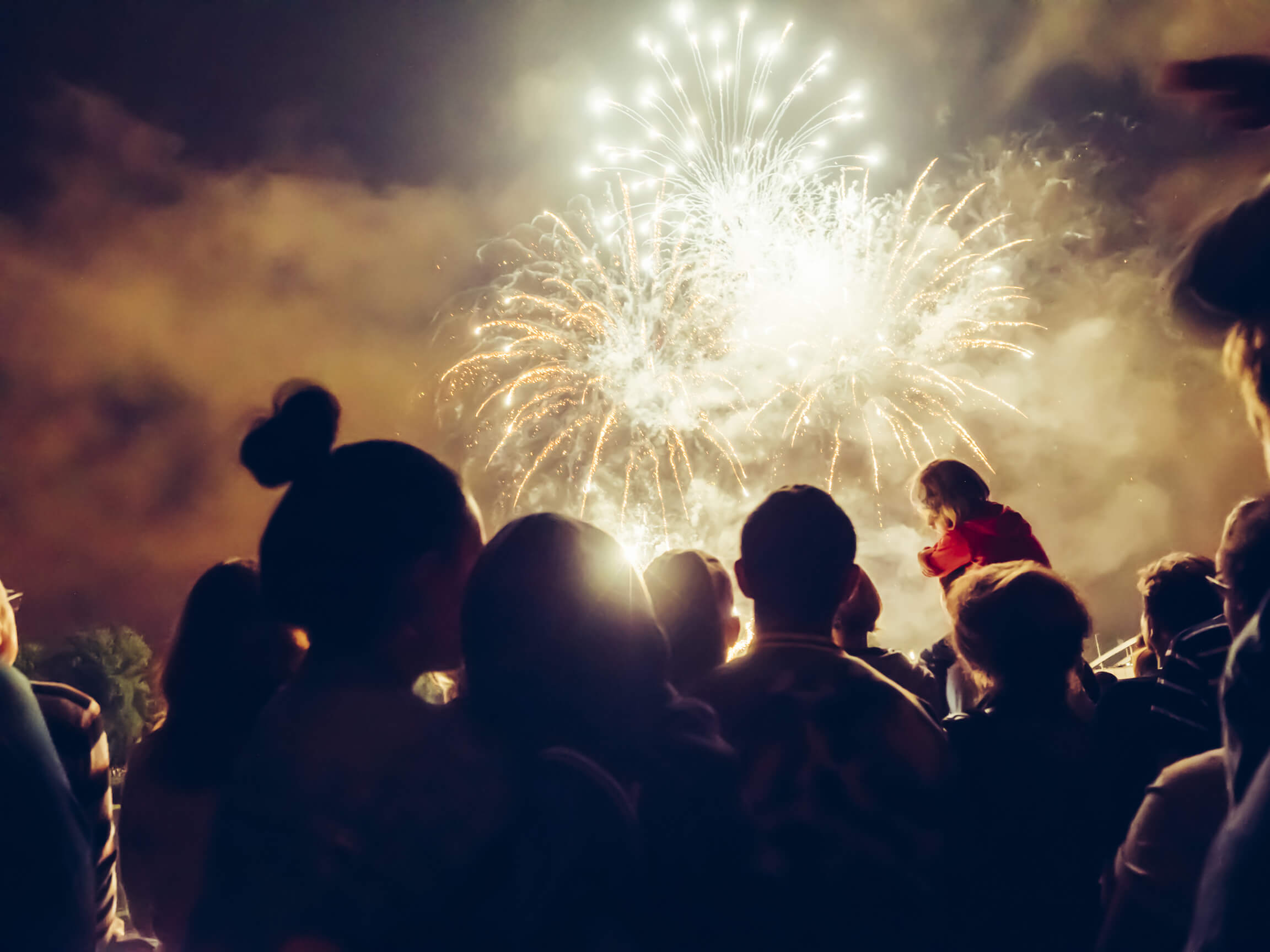 An Italian town said NO to noisy fireworks.
