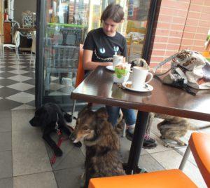 DSCF4400 Part 34 – Visiting a friend's horse and a restaurant Part 34 – Visiting a friend's horse and a restaurant DSCF4400