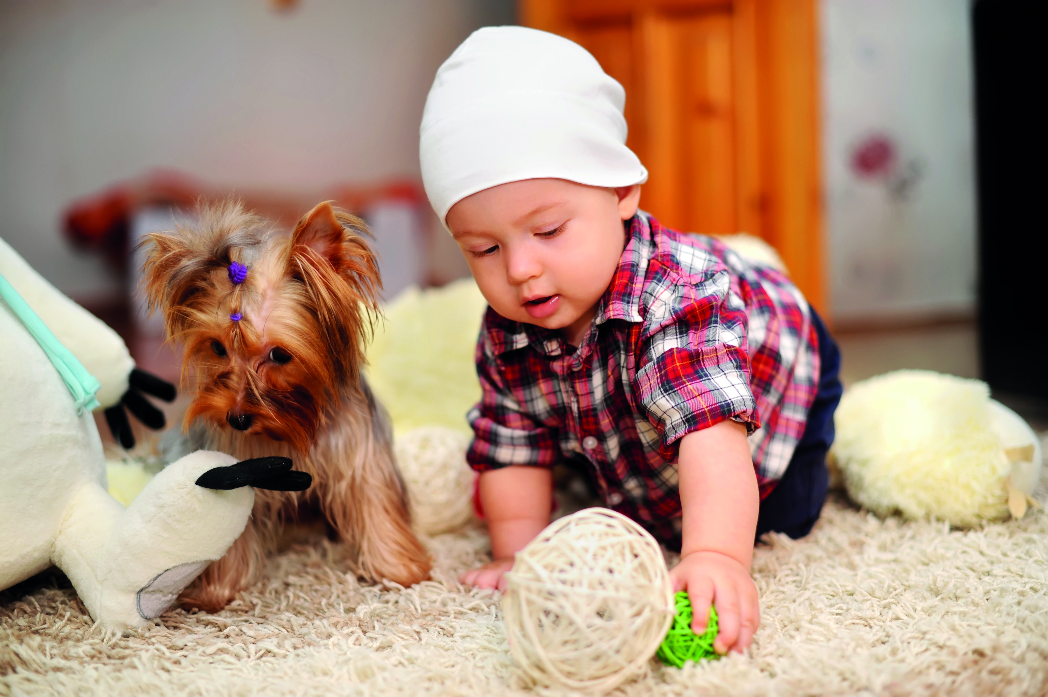 Children can benefit greatly from owning pets. Your first best friend Your first best friend shutterstock 228706816