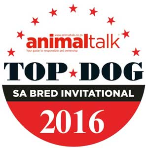 top-dog-2016x300 South African Bred and proud of it…. South African Bred and proud of it…. top dog