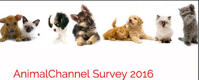 AnimalTalk Survey 2016