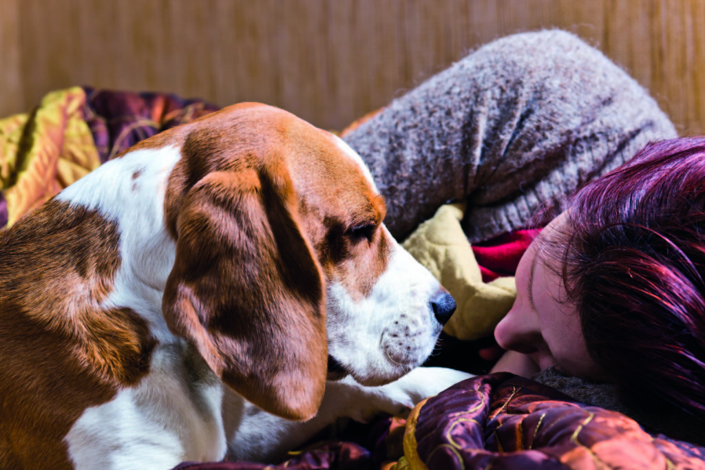 shutterstock_101375872 Depressed? Pets can bring your smile back Depressed? Pets can bring your smile back shutterstock 101375872
