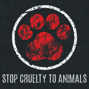 Facebook - friend or foe? Facebook - friend or foe? stop cruelty