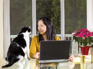A to Z on pet care (Part 1) A to Z on pet care (Part 1) shutterstock 129120224