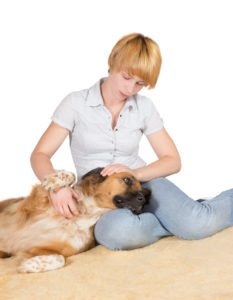 Q & A: Can dogs get diabetes and does it compare to diabetes in people? vet